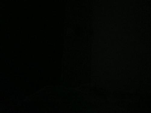 Disney's Zootopia Hintergrund titled 1520563466683