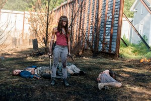 8x10 ~ The lost and the Plunderers ~ Michonne