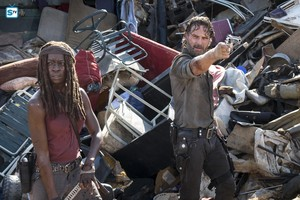 8x10 ~ The Lost and the Plunderers ~ Rick & Michonne
