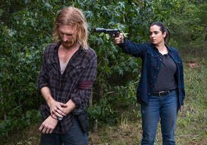 8x11 ~ Dead 或者 Alive 或者 ~ Tara and Dwight