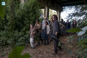 8x11 ~ Dead یا Alive یا ~ Daryl