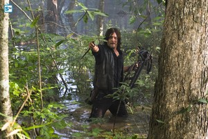 8x11 ~ Dead or Alive Or ~ Daryl
