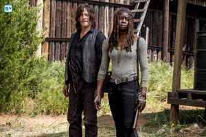 8x12 ~ The Key ~ Daryl and Michonne