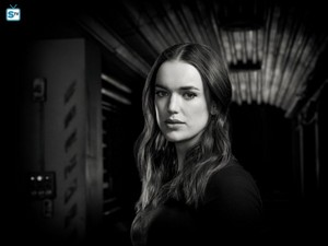 Agents of S.H.I.E.L.D. - Season 5 - Cast Promotional fotografias
