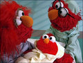 Baby Elmo, Elmo's Mom and Elmo's Dad (Elmo's World)