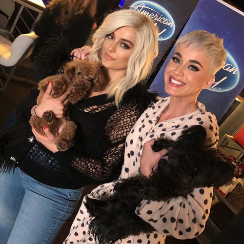 Bebe Rexha 壁纸 titled Bebe Rexha and Katy Perry