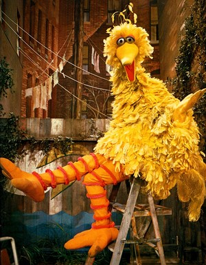 Big Bird (Sesame Street)