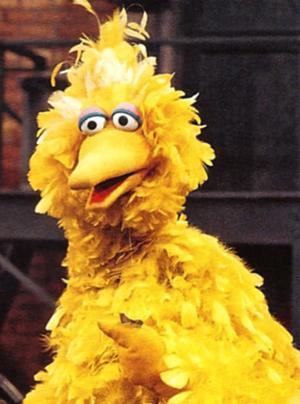 Big Bird (Sesame Street) - Big Bird foto (41179662) - fanpop