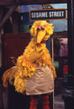 Big Bird as Mr. Hooper