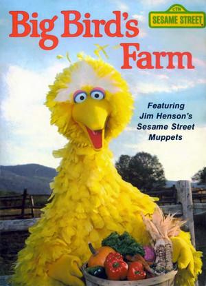 Big Bird's Farm (1981)