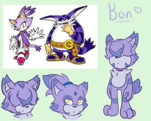 Bonfie the Cat