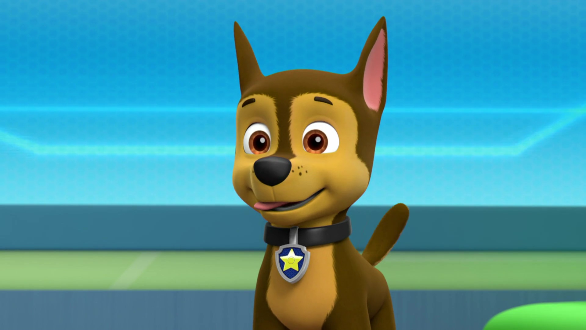 Chase - Skye and Chase - PAW Patrol Photo (41145969) - Fanpop