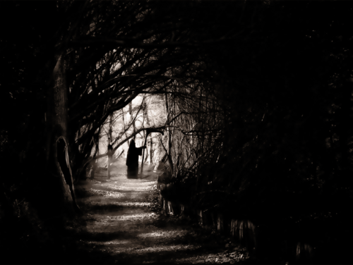 Gothic Wallpapers Wallpaper Titled Dark