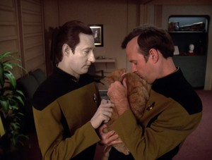 Data, Spot and Reginald Barclay