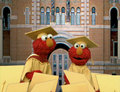 Elmo as Graduates (Elmo's World)