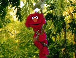 Elmo as Tarzan (Elmo's World)