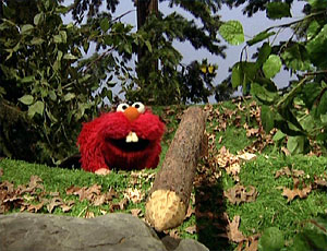 Elmo as a বীবর (Elmo's World)