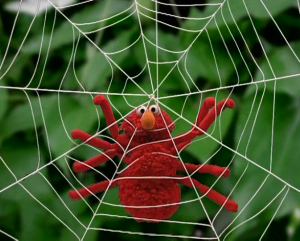 Elmo as a araña (Elmo's World)