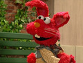 Elmo as the Red Rabbit (Abby in Wonderland)