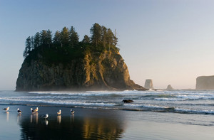 Forks, Washington