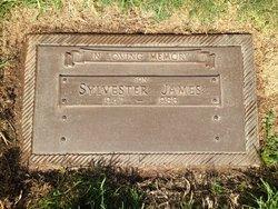 Gravesite Of Sylvester James