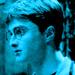 Harry Potter - daniel-radcliffe icon