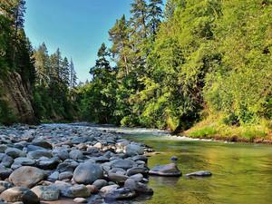 兜帽, 罩, 发动机罩 River, Oregon