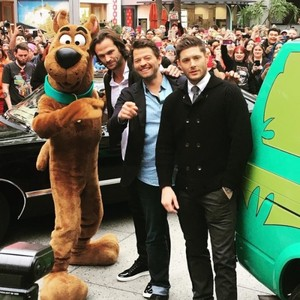 Jared, Jensen, Misha and Scooby-Doo