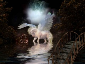 Magical Pegasus