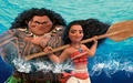 Moana - moana wallpaper