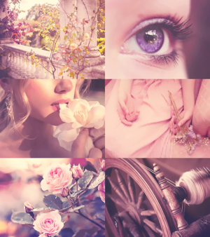 Mood Board - Aurora