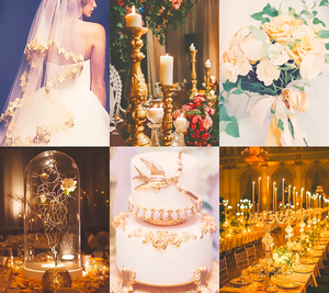 Mood Board - Belle's wedding