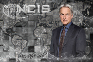 NCIS 〜ネイビー犯罪捜査班 S15 Leroy Jethro Gibbs March 2018