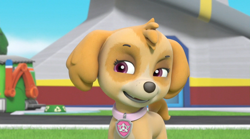Skye And Chase Paw Patrol Images Skye Hd Wallpaper And