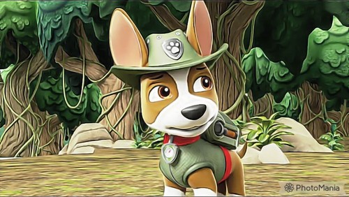 PAW Patrol karatasi la kupamba ukuta entitled Tracker