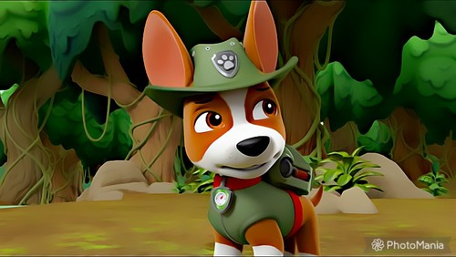 PAW Patrol karatasi la kupamba ukuta called Tracker