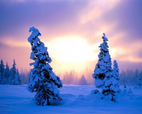 jlhfan624 achtergrond entitled Winter