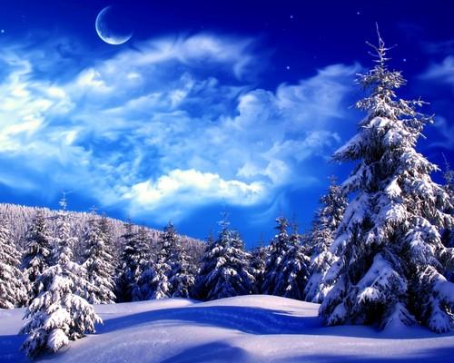 Winter wallpaper entitled Winter