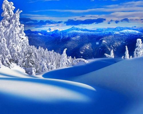 Winter wallpaper called Winter