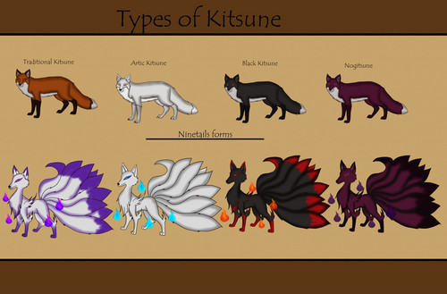Teen Wolf wallpaper called types of kitsune