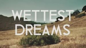 wildest dreams (parody video)