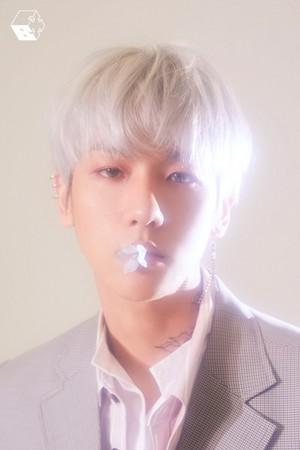 'Blooming Days' Baekhyun