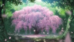 вишня Blossom