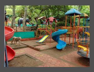 11954875 children s park