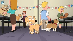 16.10 - Boy (Dog) Meets Girl (Dog)