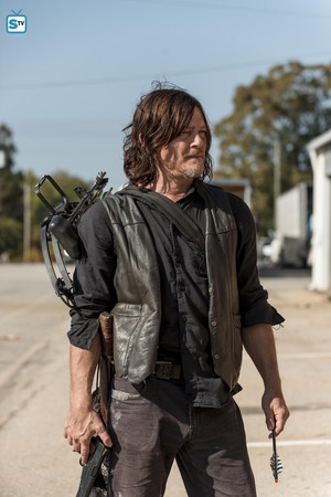 8x15 ~ Worth ~ Daryl