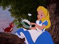 Alice in Wonderland  - classic-disney photo