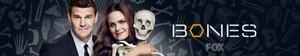 Bones Header/Banner
