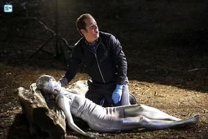 "CSI ~ 15.16 ""The Last Ride"""