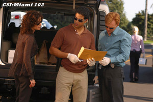 "CSI: Miami ~ 1.02 ""Losing Face"""